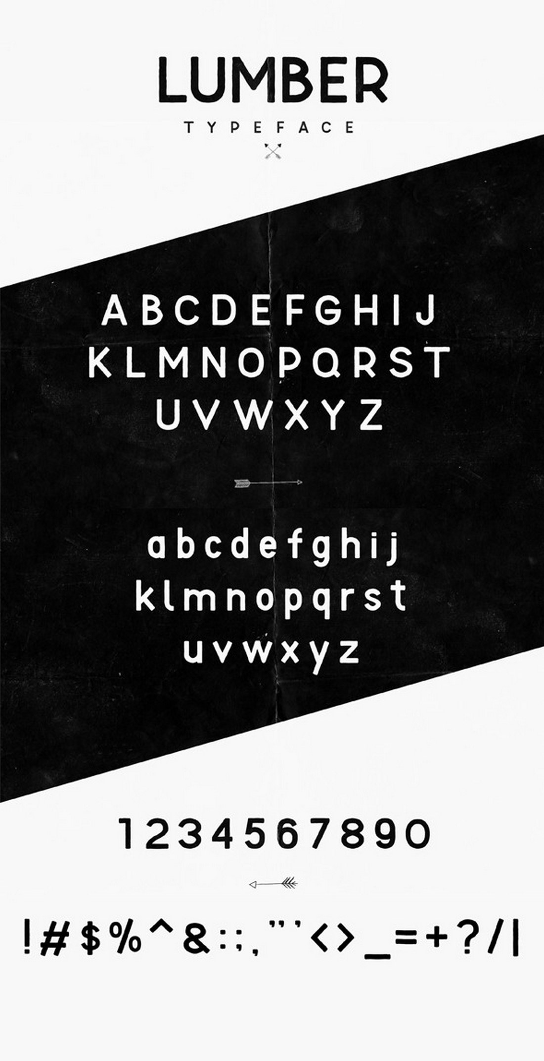 Lumber-Typeface 40+ Best Number Fonts for Displaying Numbers design tips