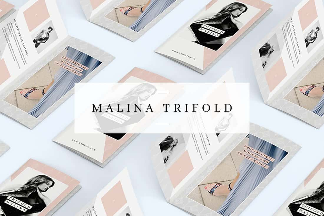 MALINA-Trifold-Brochure-Template 20+ Best InDesign TriFold Templates 2020 design tips  Inspiration