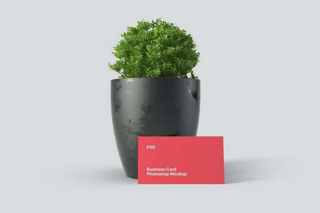 Minimal Business Card Mockup Scene