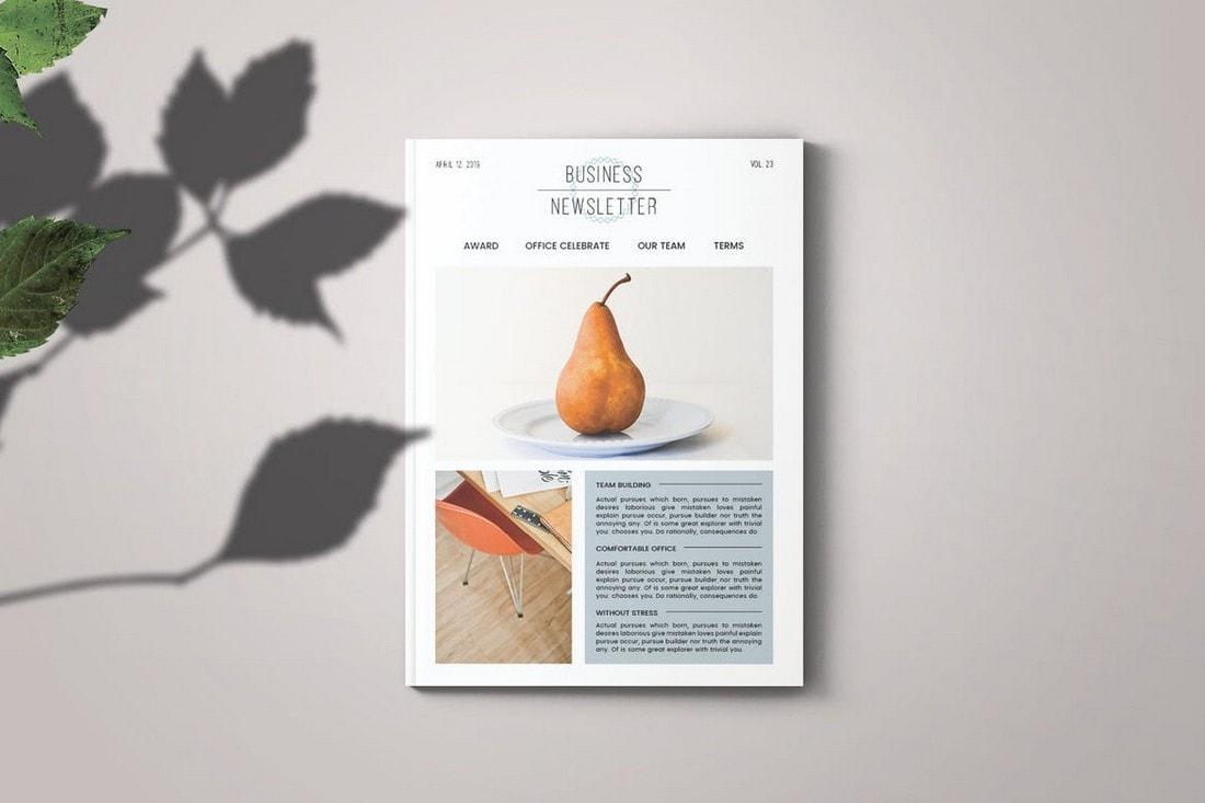 Minimal-Business-Newsletter-Template 20+ Best InDesign Newsletter Templates (Free & Premium) design tips  Inspiration
