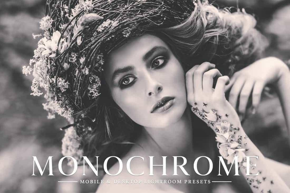Monochrome Lightroom Presets