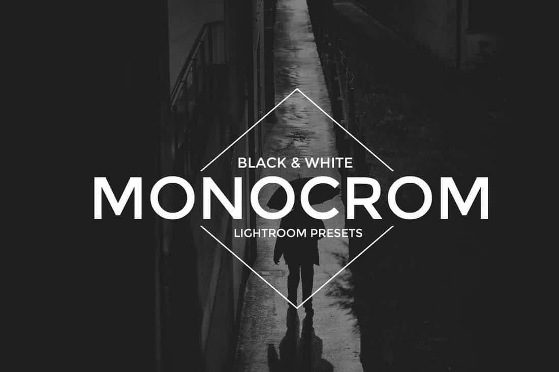 Monocrom B&W Lightroom Presets