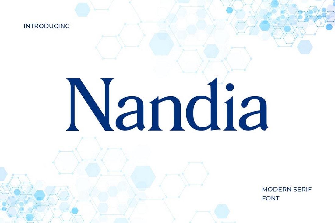 Nandi - Modern Serif Font