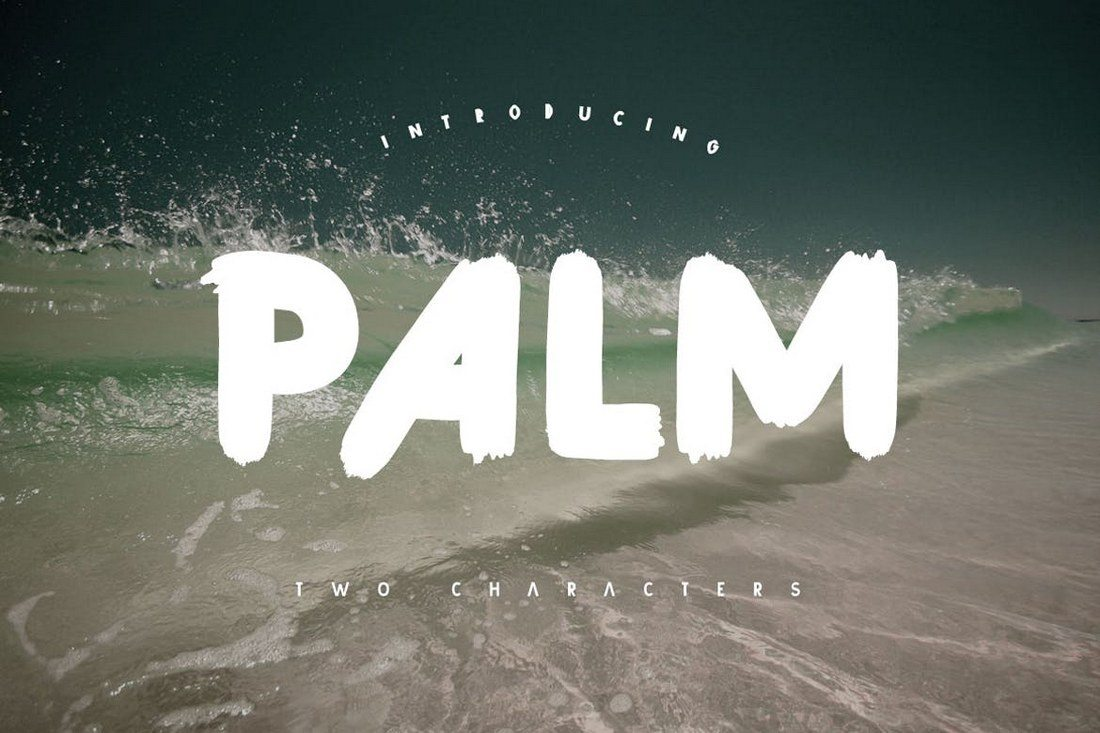 Palm-Brush-Font 100+ Beautiful Script, Brush & Calligraphy Fonts design tips
