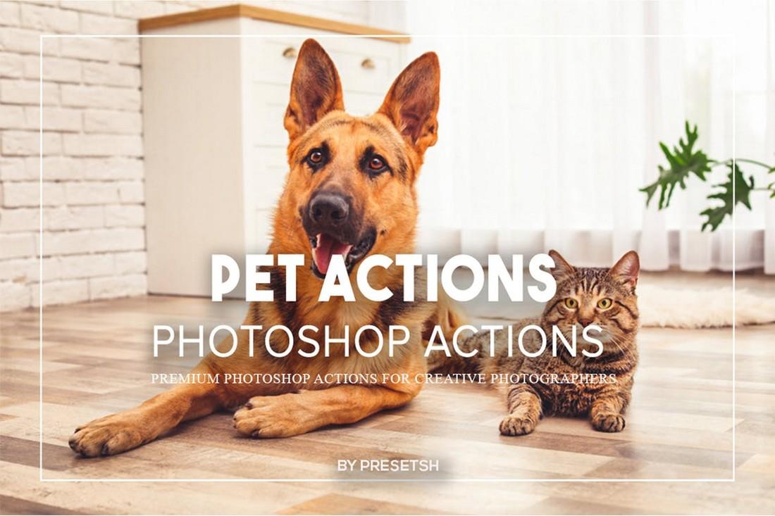 Pet Photos Photoshop Actions