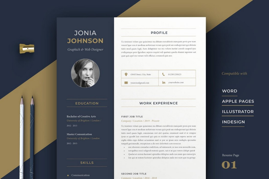 Professional Apple Pages Resume Template