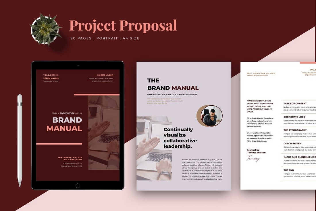 Professional Brand Manual Template