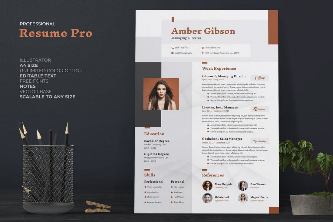 Professional-CV-Resume-Template 50+ Best CV & Resume Templates 2020 design tips