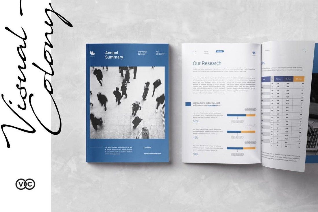 Professional InDesign Annual Report Template