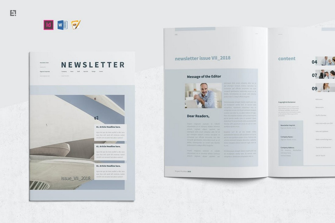 Professional Newsletter Template for MS Word