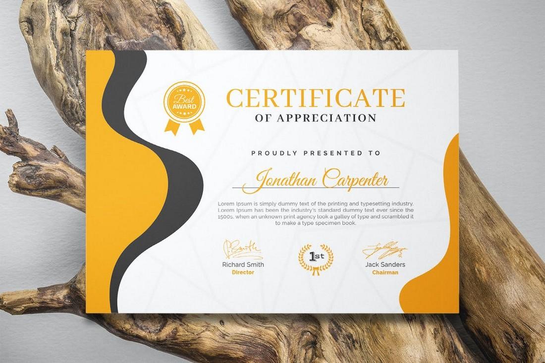 Professional Training Certificate Template