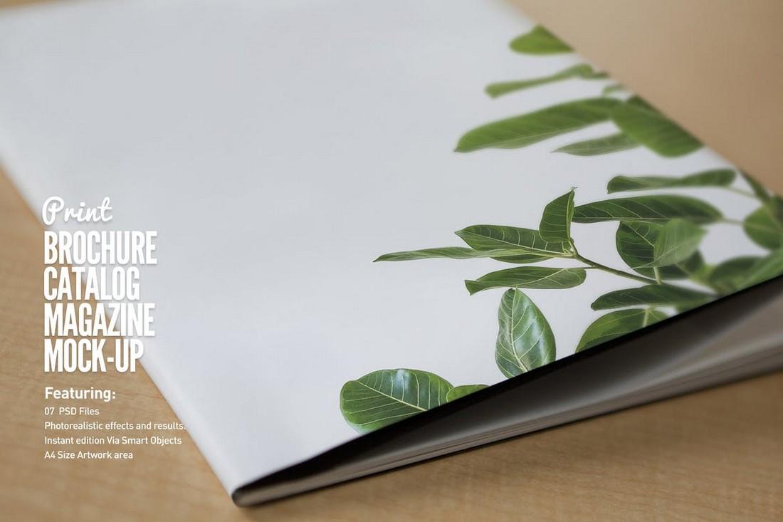 Realistic Brochure & Catalog Mockups