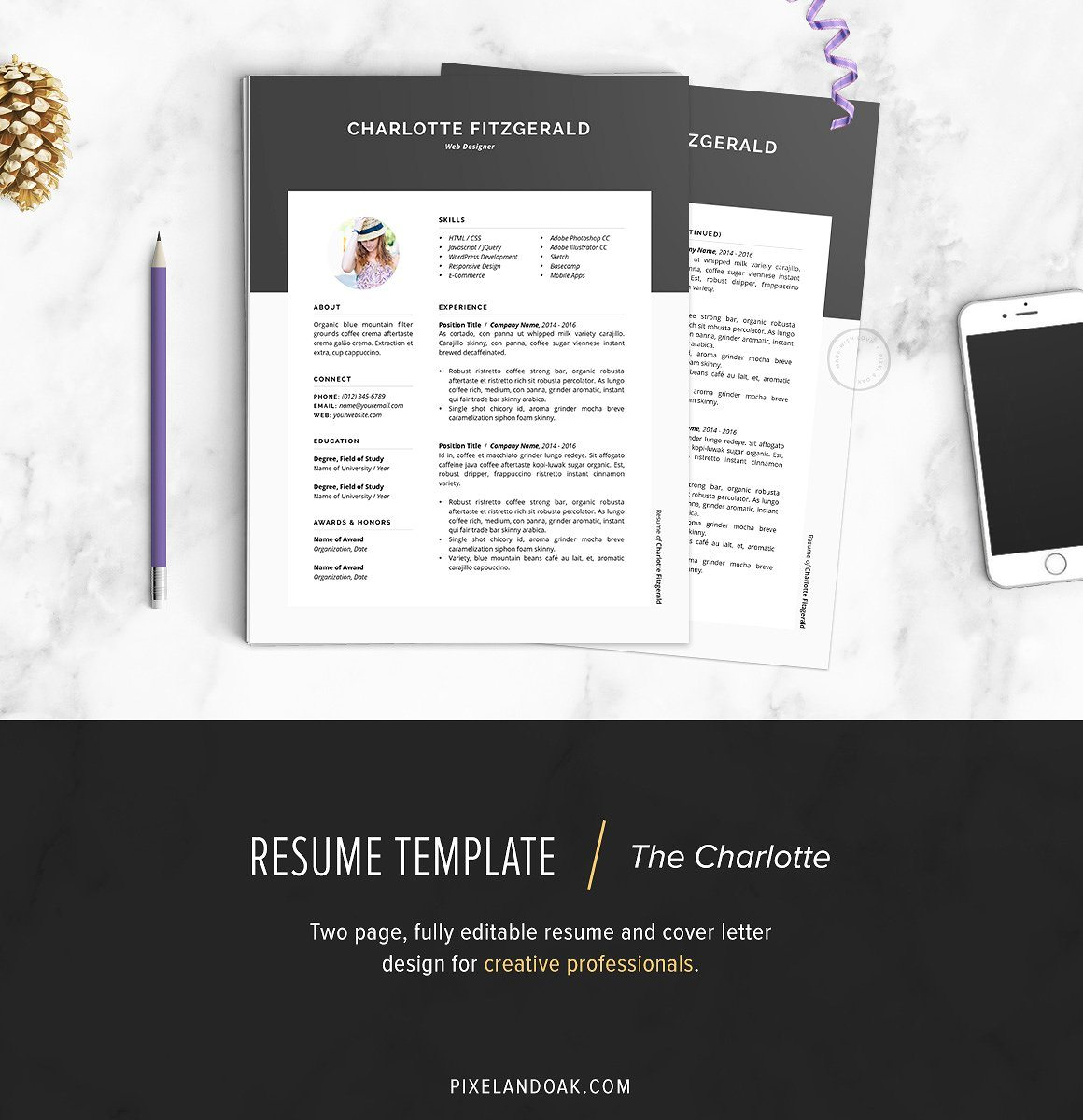 Resume-Template-The-Charlotte 20+ Best Pages Resume & CV Templates design tips