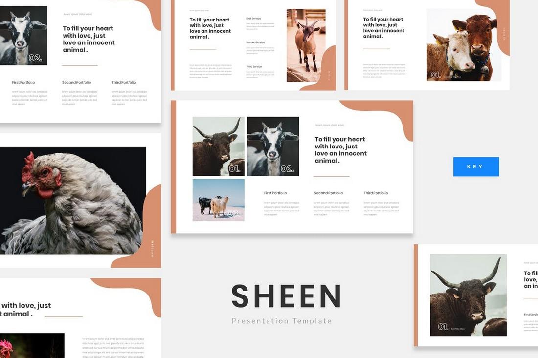Sheen - Animal Farm Keynote Presentation Template