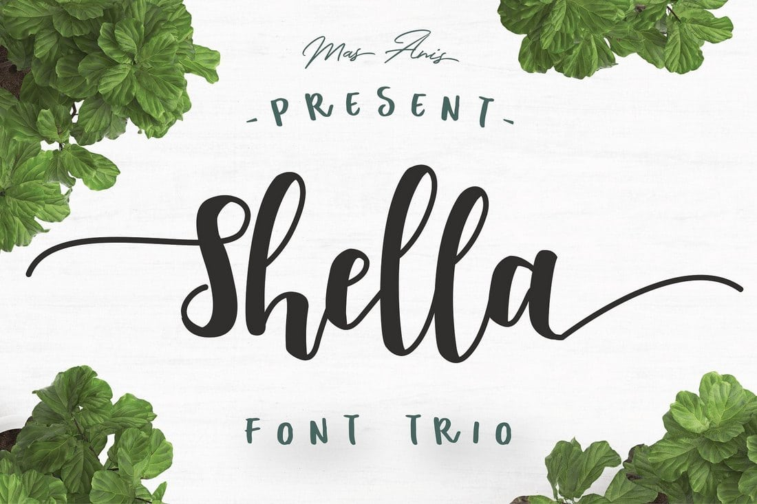 Shella-Font-Trio 60+ Best Free Fonts for Designers 2019 (Serif, Script & Sans Serif) design tips