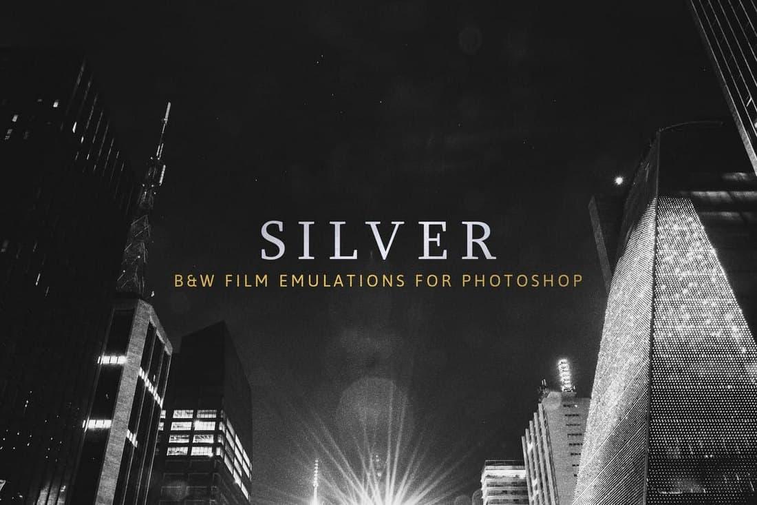 Silver - 28 Real B&W Film Emulations