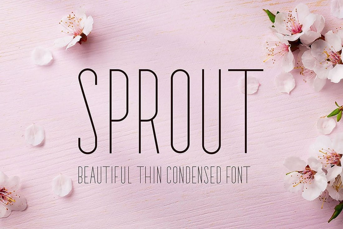 Sprout-Narrow-Sans-Serif-Font 50+ Best Condensed & Narrow Fonts of 2020 design tips
