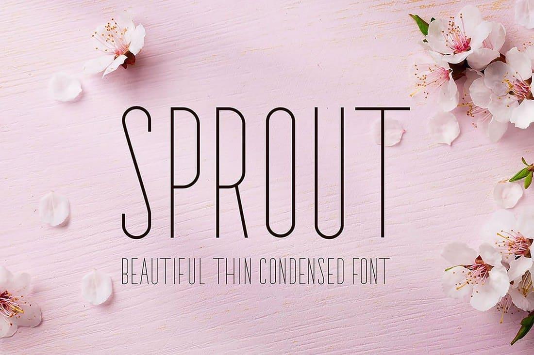 Sprout - Sans Serif Font