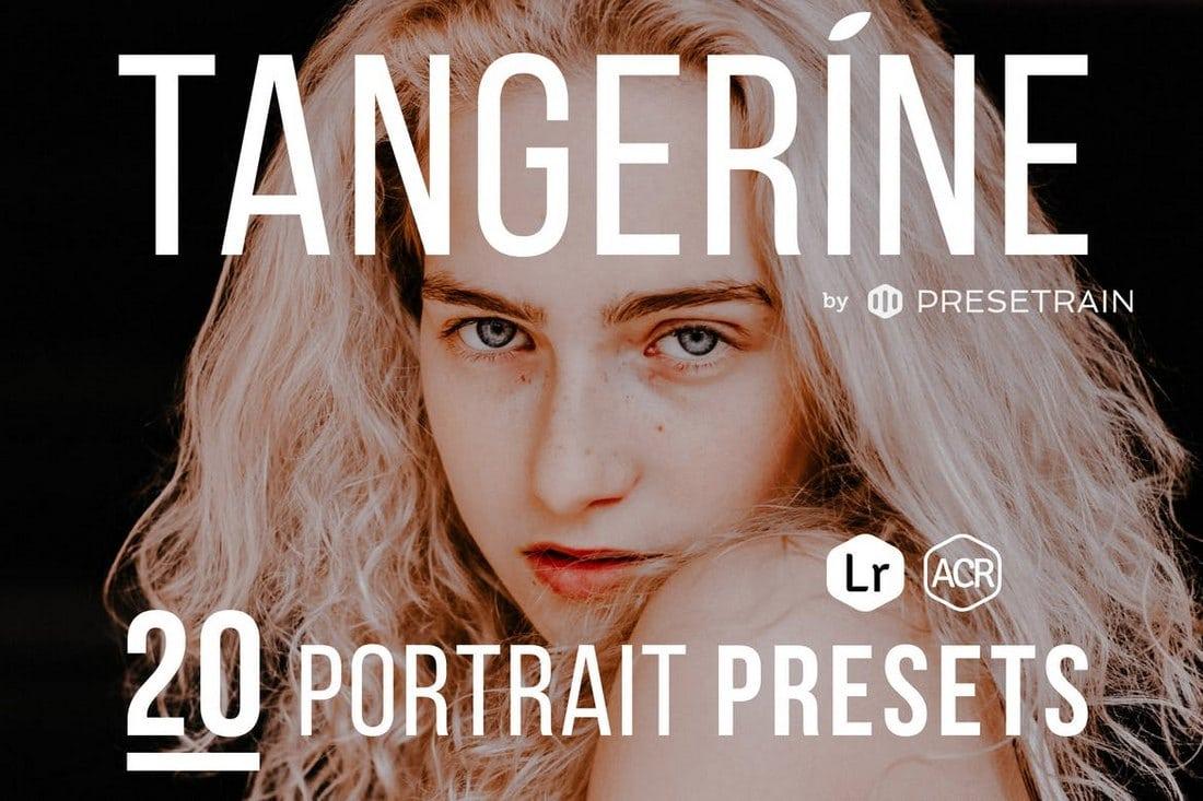 Tangerine-Portrait-Presets-for-Lightroom-ACR 20+ Best Lightroom Presets for Portraits design tips