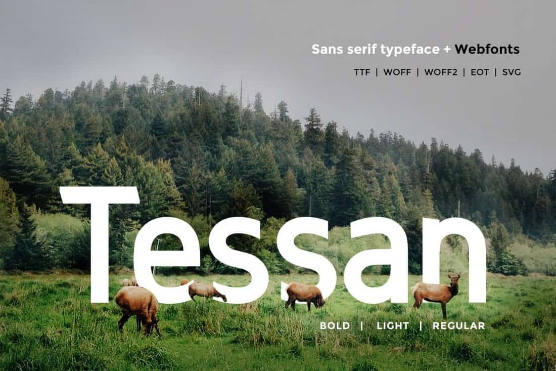 Tessan Sans - Modern Typeface