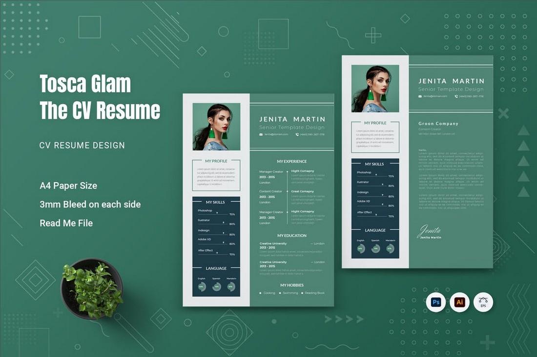 Tosca Glam CV Resume Template (PSD & AI)