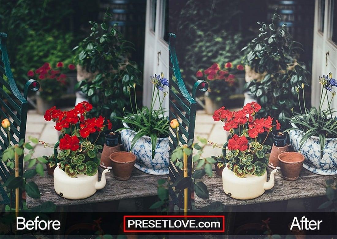 Vintage Garden - Free Landscape Lightroom Preset