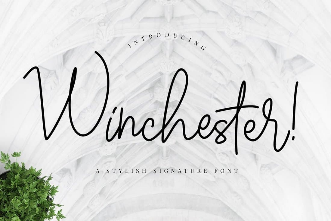 Winchester-Signature-Script-Font 50+ Best Hand Lettering & Handwriting Fonts 2021 design tips