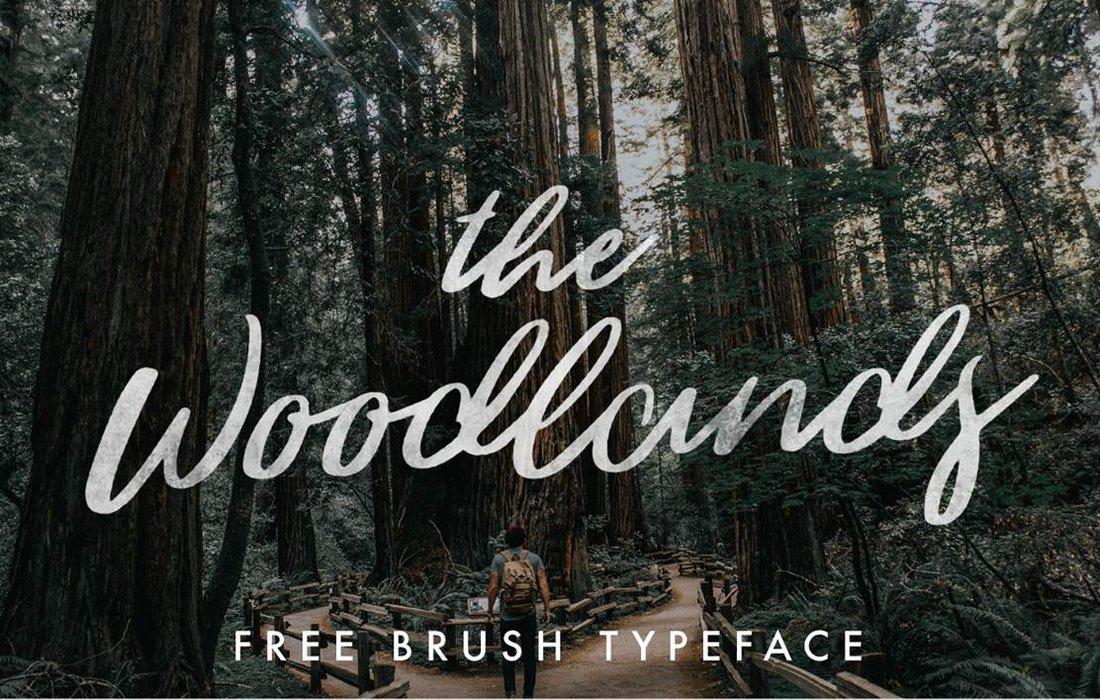 Woodlands-Free-Brush-Script-Font 30+ Bold & Free Script Fonts design tips  Typography|fonts|script