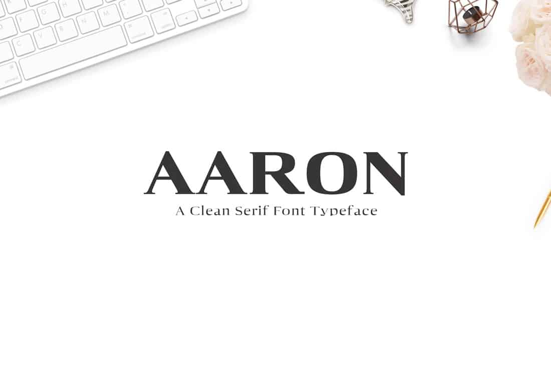 aaron-font 15+ Web Design Trends to Watch in 2021 design tips