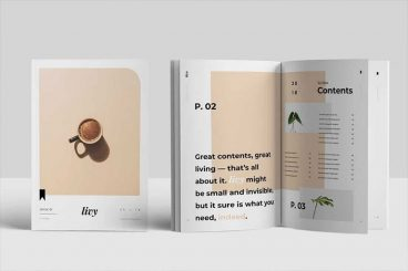 20+ Best InDesign Templates 2020 (For Brochures, Flyers, Books & More)