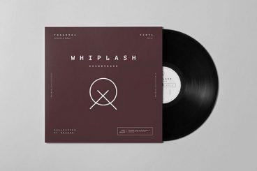 20+ Best Vinyl Mockups