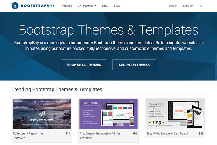 Getting Started With Bootstrapbay Plus 3 Theme Giveaways