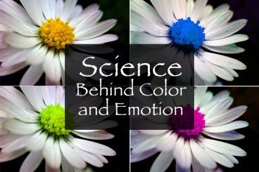 The Science Behind Color and Emotion