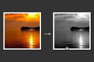 10 Easy Image Hover Effects You Can Copy and Paste