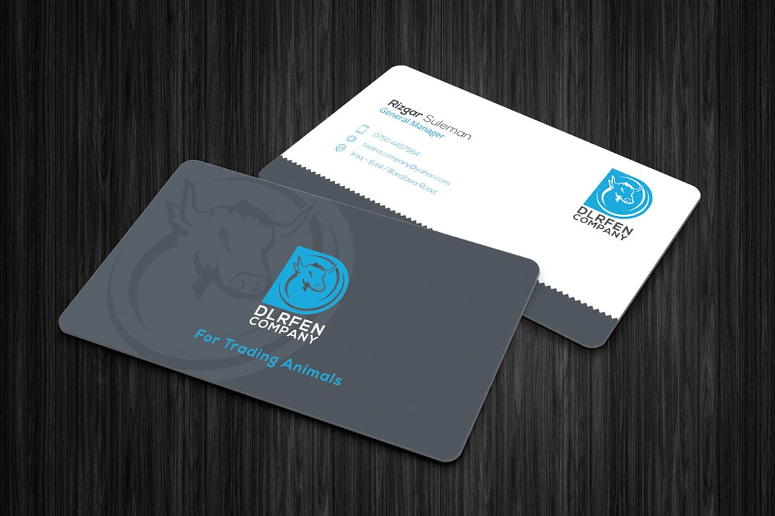 dlrfen What to Put on a Business Card: 8 Creative Ideas design tips