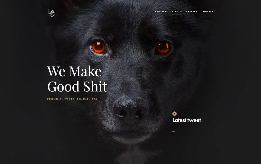 dogstudio Black and White Design: 10 Stunning Examples (+ Tips) design tips