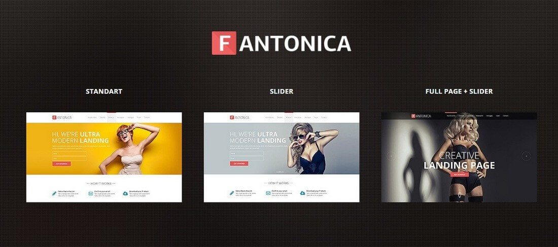 fantonica 30+ Clean & Minimal Landing Page Templates design tips