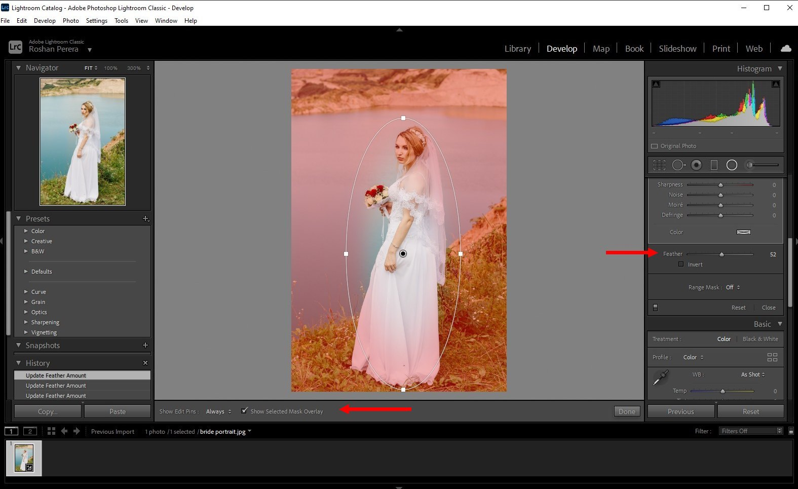 how to blur background lightroom classic - 2