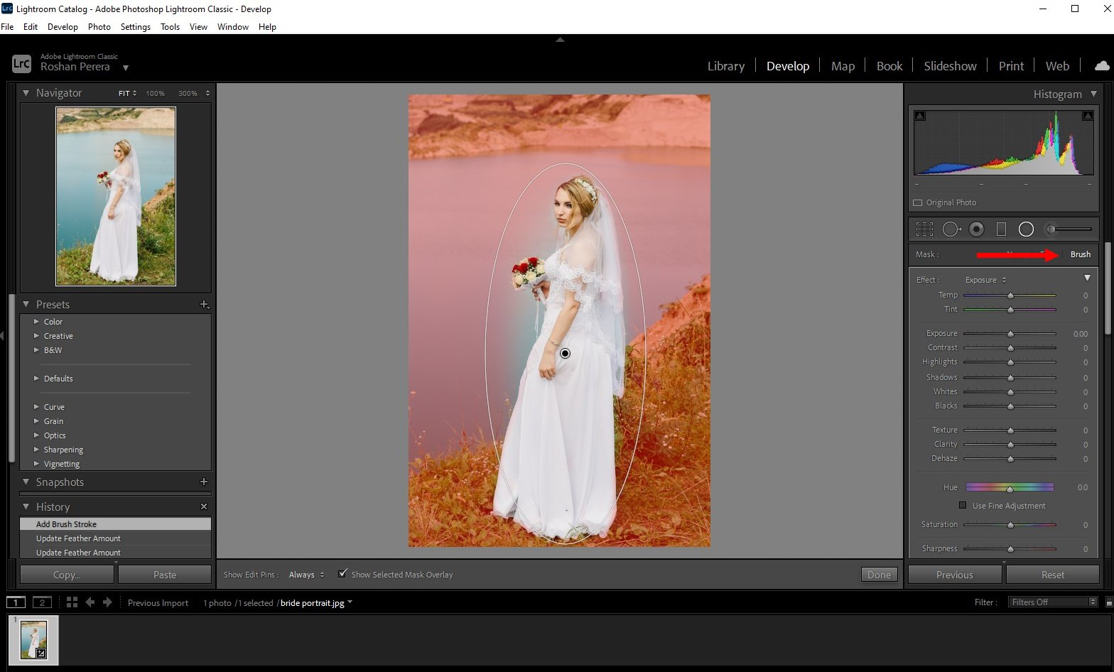 how to blur background lightroom classic - 3