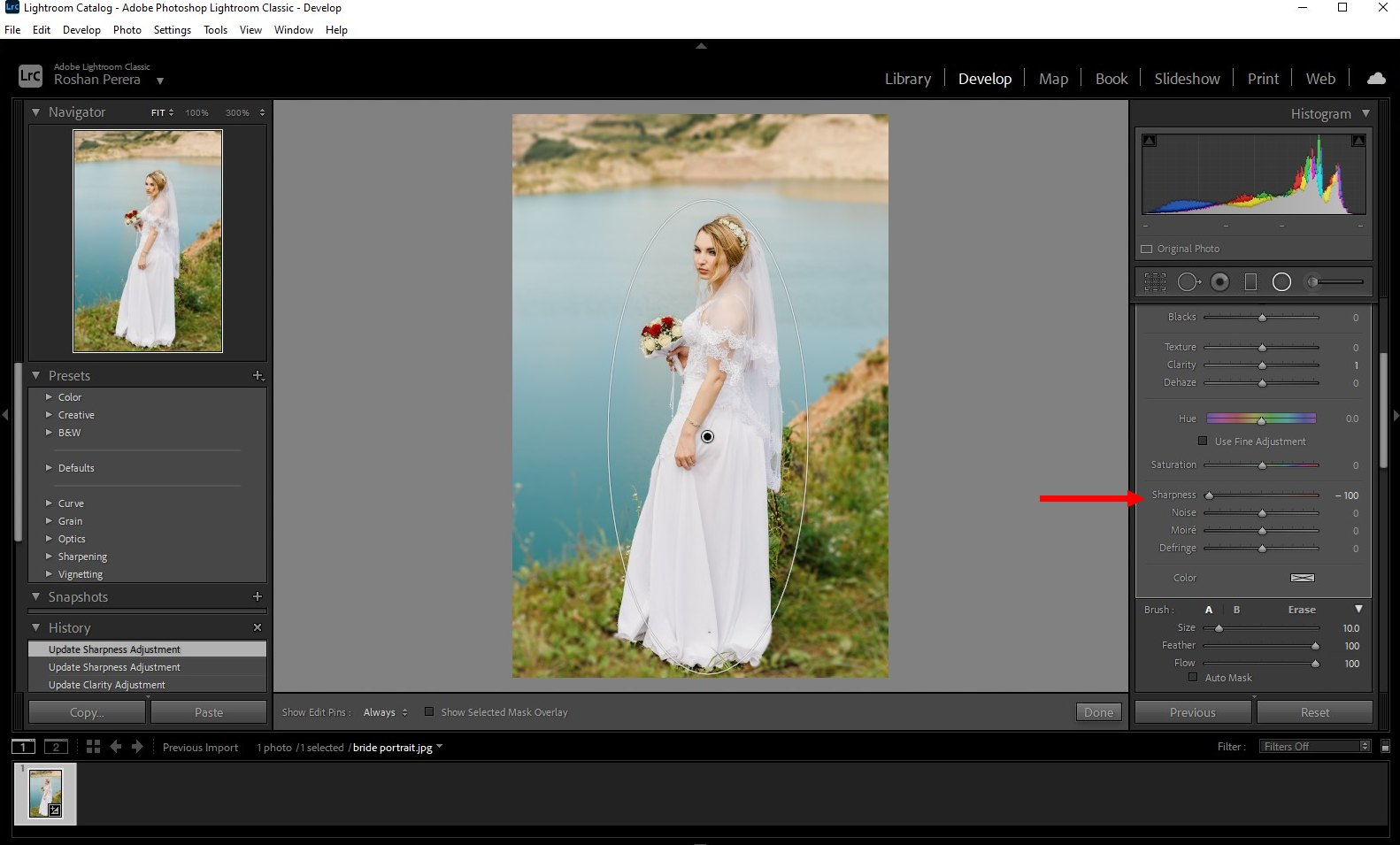 how to blur background lightroom classic - 4