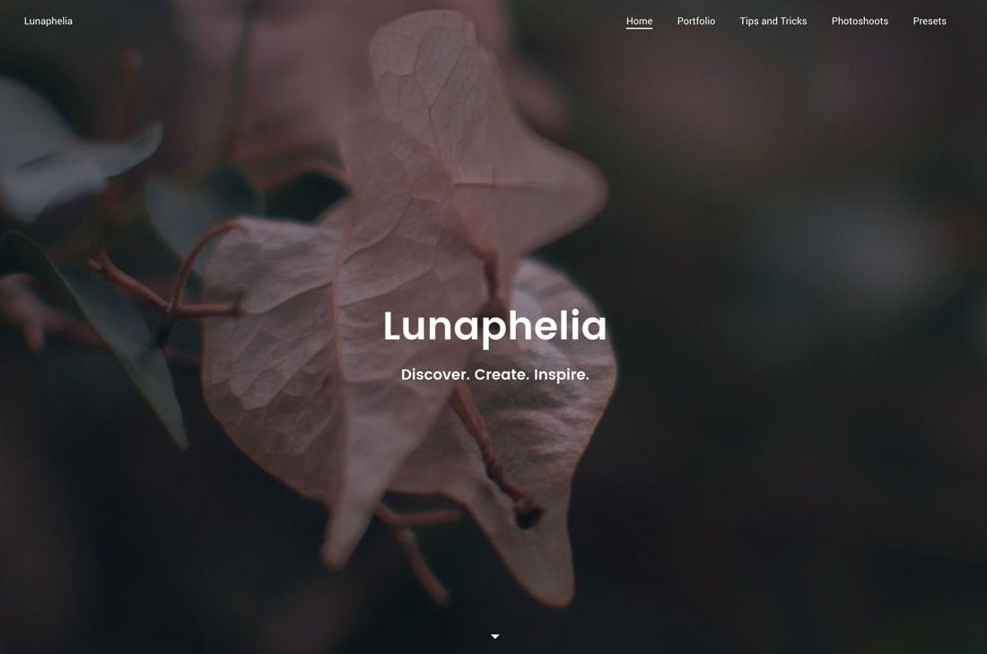 lunap 10+ Best Free Portfolio Website Tools & Templates in 2021 design tips