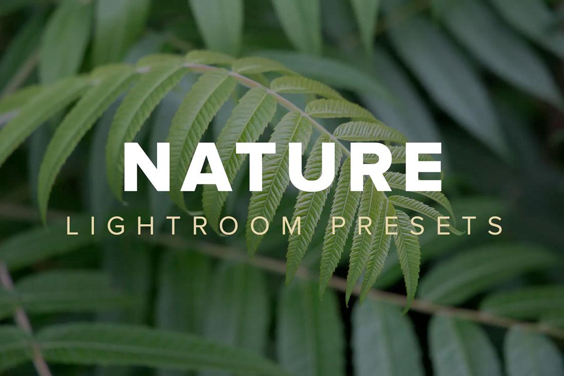 download lightroom presets