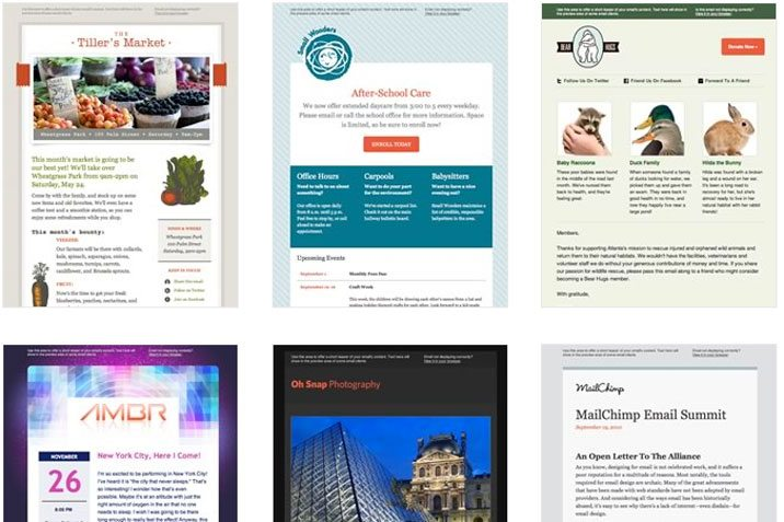 Simple Tips For Designing A Newsletter Template That Stands Out - Simple newsletter template