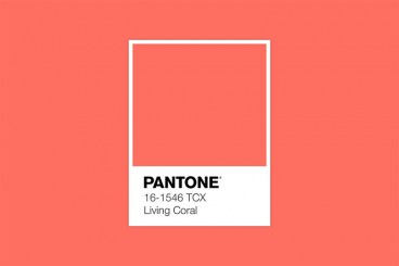 How to Use the 2019 Pantone Color of the Year in Design Projects