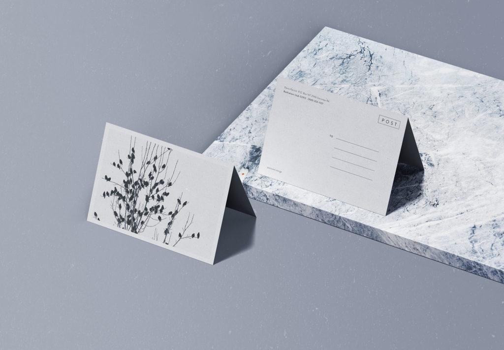 postcard-mockups-13-1024x711 20+ Postcard Mockup Templates (Free & Pro) design tips