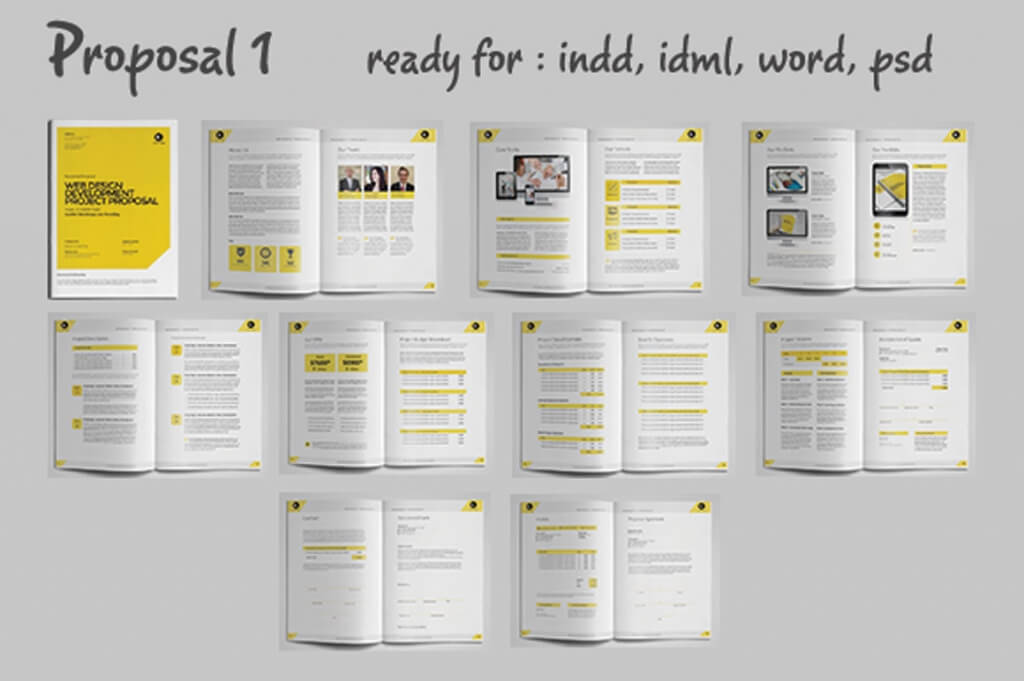 Web Design Proposal Template Pdf