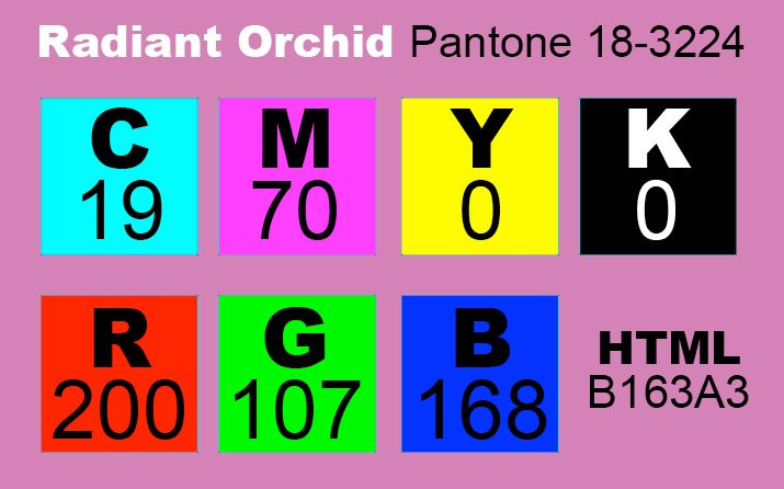 Radiant Orchid Named Pantone Color Of The Year: Now What