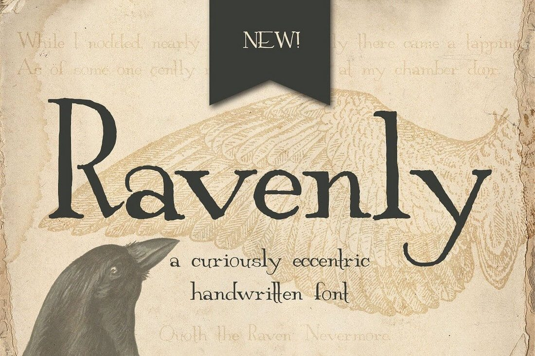 ravenly-1- 100+ Best Modern Serif Fonts design tips