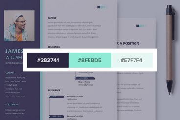 25+ Stylish Resume Color Schemes for 2021