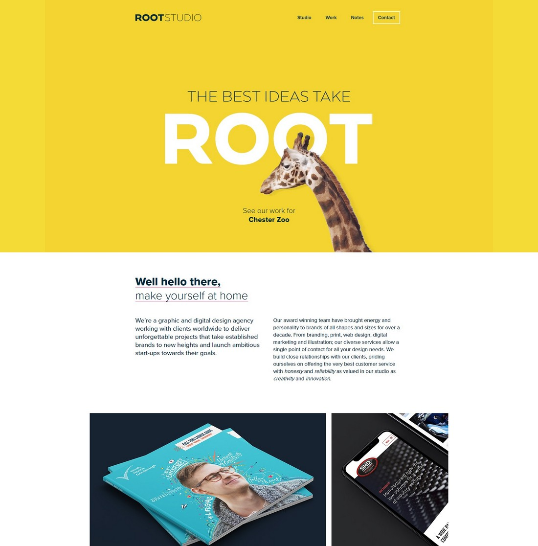 rootstudio 10 Best Graphic Design Portfolio Examples + Templates design tips